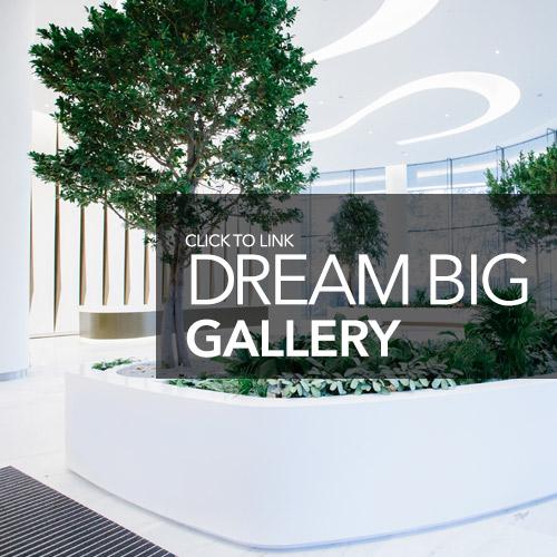 homepg dreambig 500x500